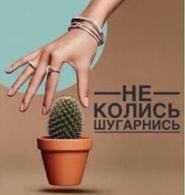 фермы арка в Кыргызстан: Косметолог   Шугаринг   С выездом на дом, Консультация, Гипоаллергенные материалы