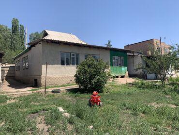 Недвижимость - Чаек: 8 кв. м, 4 комнаты, Подвал, погреб, Забор, огорожен