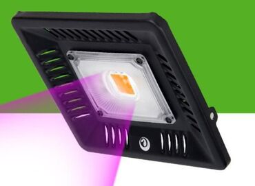 Фитопрожектор. Прожектор оснащённый светодиодной лампой для растений