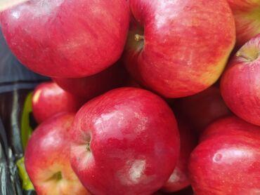 Овощи, фрукты - Кыргызстан: Продается яблоки От 10 кг доставка по Бишкеку бесплатно! Сорт