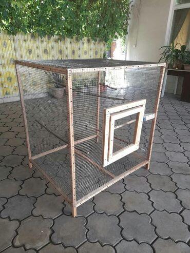 Животные - Дачное (ГЭС-5): Новая клетка для птиц( домашних, диких),для кроликов.Размер 100/85