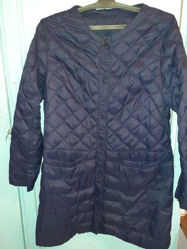 спатифилум женское счастье в Кыргызстан: Женская деми куртка ы отличном состоянии 48 50 размер