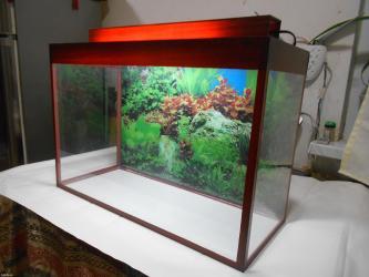 Bakı şəhərində Teze akvarium 60 litrelik