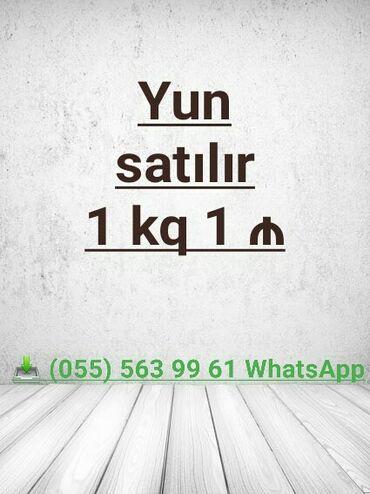 Tekstil - Azərbaycan: Sadəcə Whatsapp aktivdir