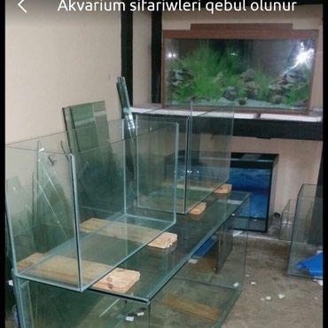 - Azərbaycan: Akvarium sifariwleri qebul olunur munasip qiymetlerle. hazirlarida var