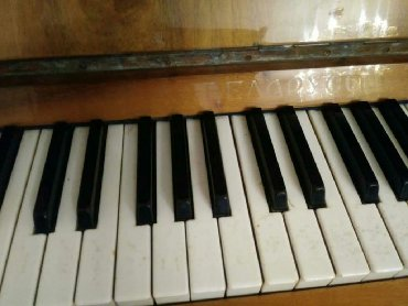 Спорт и хобби в Остров Хазар: Belarus piyano kokludur yaxwi vezytde tecili satlir 150 azn unvan