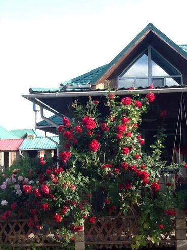 иссык куль чок тал пансионаты в Кыргызстан: Продажа домов 160 кв. м, 7 комнат, Свежий ремонт
