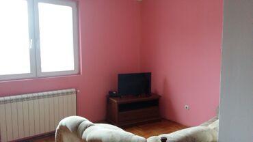 Torba pre meseca - Srbija: Apartment for rent: 1 soba, 60 kv. m sq. m., Beograd