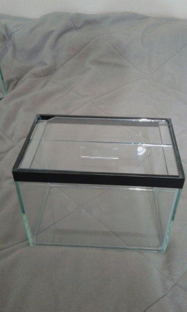 Akvarijum dimenzija dužina 20cm,širina 13cm,visina 15cm.Idealan za 2-4 - Smederevska Palanka