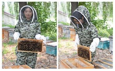 щиток защитный лицевой визион в Кыргызстан: Анти-пчелиная специальная одежда на заказ.Дышащая,воздухопроницаемый,с