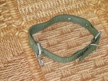 куплю мопса в Кыргызстан: Продам инвентарь для выгула собак,шлейка 1 штповодки