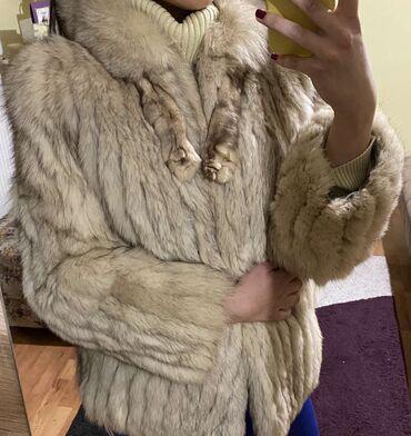 Astrahan bunda - Srbija: Bunda, polarna lisica  SAGA FOX 40
