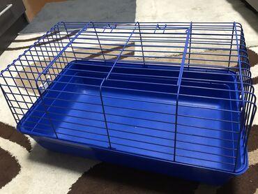Морские свинки - Кыргызстан: Продаю клетку для кролика или для морской свинки  Габариты: Длина: 58