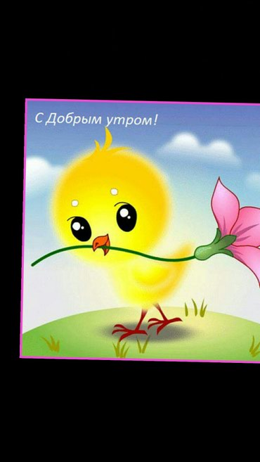 Требуется пом.зав склад График работы5/2.10/18 в Бишкек