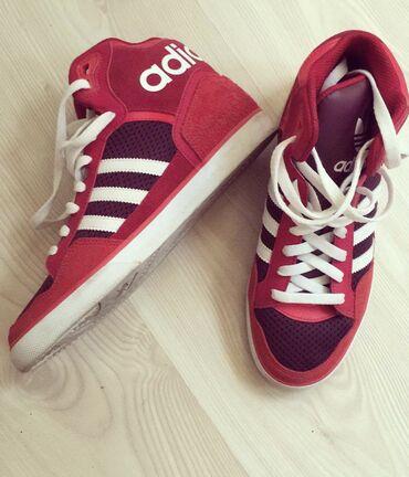 Adidas patike original, nisu nosene nijednom  Broj 40