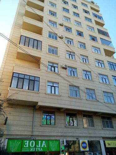 jako papuqay satilir - Azərbaycan: Mənzil satılır: 1 otaqlı, 61 kv. m