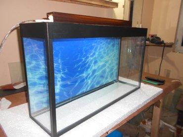 Bakı şəhərində teze akvarium  uzunu 70 sm hundurluyu qapaqla 44sm eni  20 sm