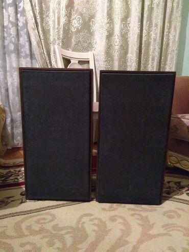 radiotehnika в Кыргызстан: Раритетная винтажная акустика 35 АС 201 в идеальном состоянии