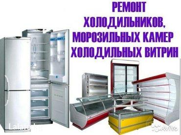 Ремонт холодильника быстро и профессионально.   Ремонт, монтаж, обслу в Лебединовке