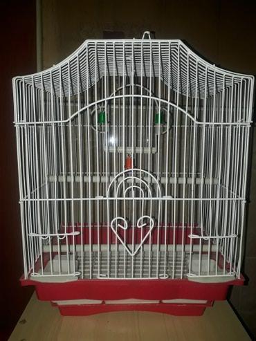 Клетки для птиц есть разные виды в Бишкек