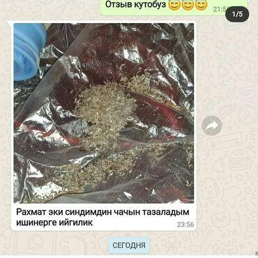 срв бишкек in Кыргызстан | HONDA: 🕷бит сиркелерден арыла албай жатасызбы?🙅♀️ шампунь, спрей,дары-дармек