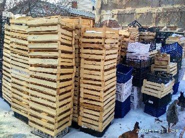 прочные пластиковые ящики в Кыргызстан: Ящик помидор персик 550-500шт