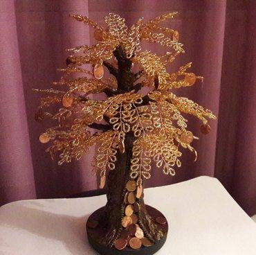 Το δέντρο του χρήματος (ι) σε Eastern Thessaloniki