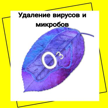 сары озон городок бишкек в Кыргызстан: Дезинфекция, дезинсекция | Вирусы, микробы | Транспорт, Офисы, Квартиры