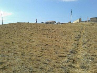 zapchasti na deu в Азербайджан: Продам 8 соток Строительство от собственника