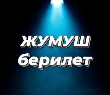 шин лайн бишкек работа в Кыргызстан: Менеджер по продажам. Без опыта. 5/2. Филармония
