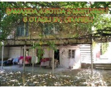17 elan | HEYVANLAR: Tecili satilir samaxi rayonu 5 otaqli ev 2 mertebe