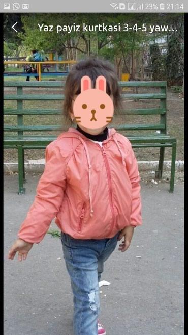 ad-image-50250184
