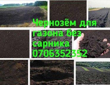 Чернозём отличного качества для газона клумб без сорняка, Зил