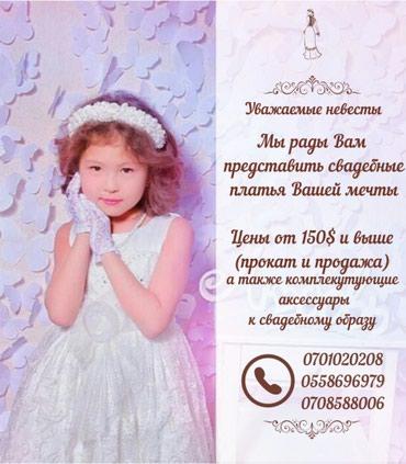 ad-image-51844605