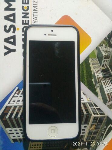 плата защиты в Азербайджан: Б/У iPhone 5 16 ГБ Белый