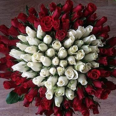 Розы Розы и 101 роза по опт ценам прямая в Бишкек