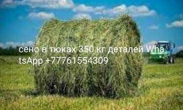 Реализуем сено с доставкой либо самовывоз сено Луговое отличного