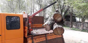 Услуги манепулятора до 500-700 кг + самасвал перевозка груза