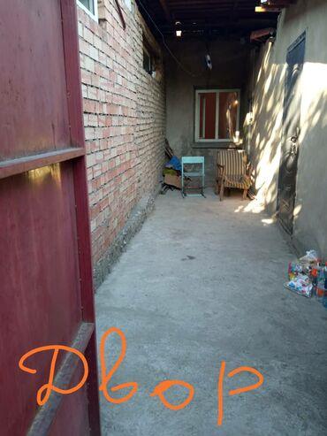 Недвижимость - Новопокровка: 19 кв. м, Без мебели