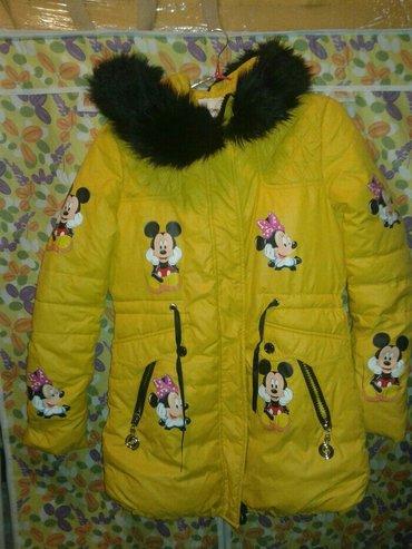 Продаю новую зимнюю подрастковую в Бишкек