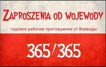 финская виза в Азербайджан: Виза 365/365. Годовое польское рабочее приглашение от Воеводы 365 на
