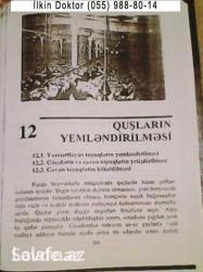 Bakı şəhərində Toyuq-Cuce Kokeltme Kitabi