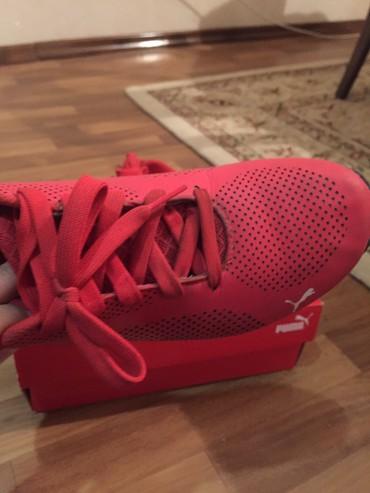 стильная мужская обувь в Кыргызстан: Кроссовки и спортивная обувь 38.5