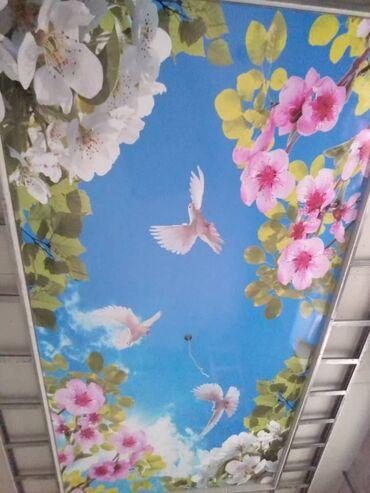 3d номера на авто бишкек в Кыргызстан: Натяжные потолки   Глянцевые, Матовые, 3D потолки