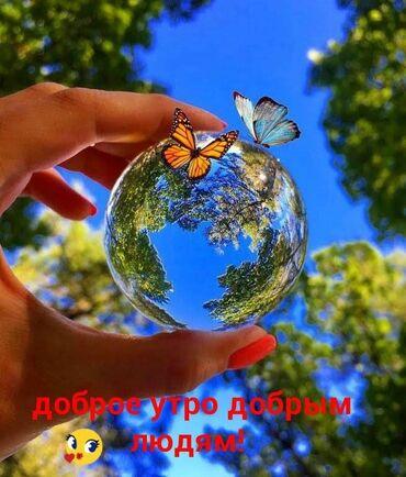 acura csx 2 at в Кыргызстан: Продавец-консультант. С опытом. 5/2. Гоин