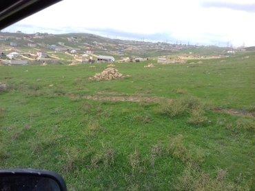 Tecili olaraq Abweron rn Qobu qesebesi yolunda ana yoldan 200-300 in Xırdalan