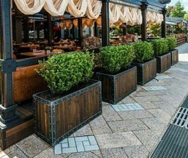 перегородки - Azərbaycan: Restoran ve kafeler uchun arakesmeler. Sifarishle ferqli dizaynlarda
