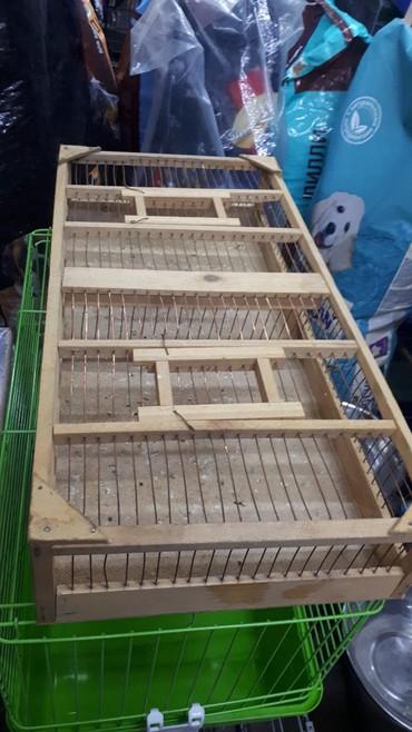 сетка от птиц в Кыргызстан: Переноски для птиц