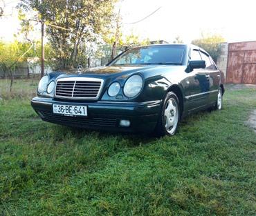 Qazax şəhərində Mercedes-Benz E 240 1998