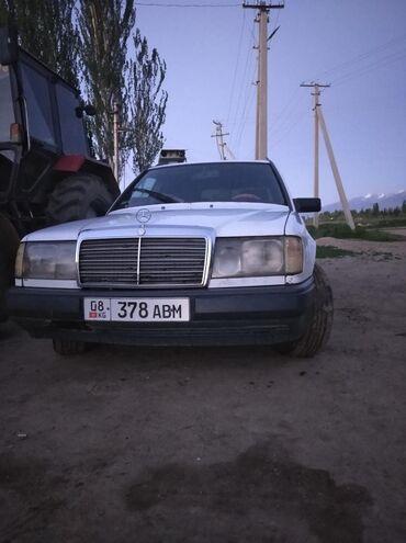 Mercedes-Benz в Теплоключенка: Mercedes-Benz W124 3 л. 1989